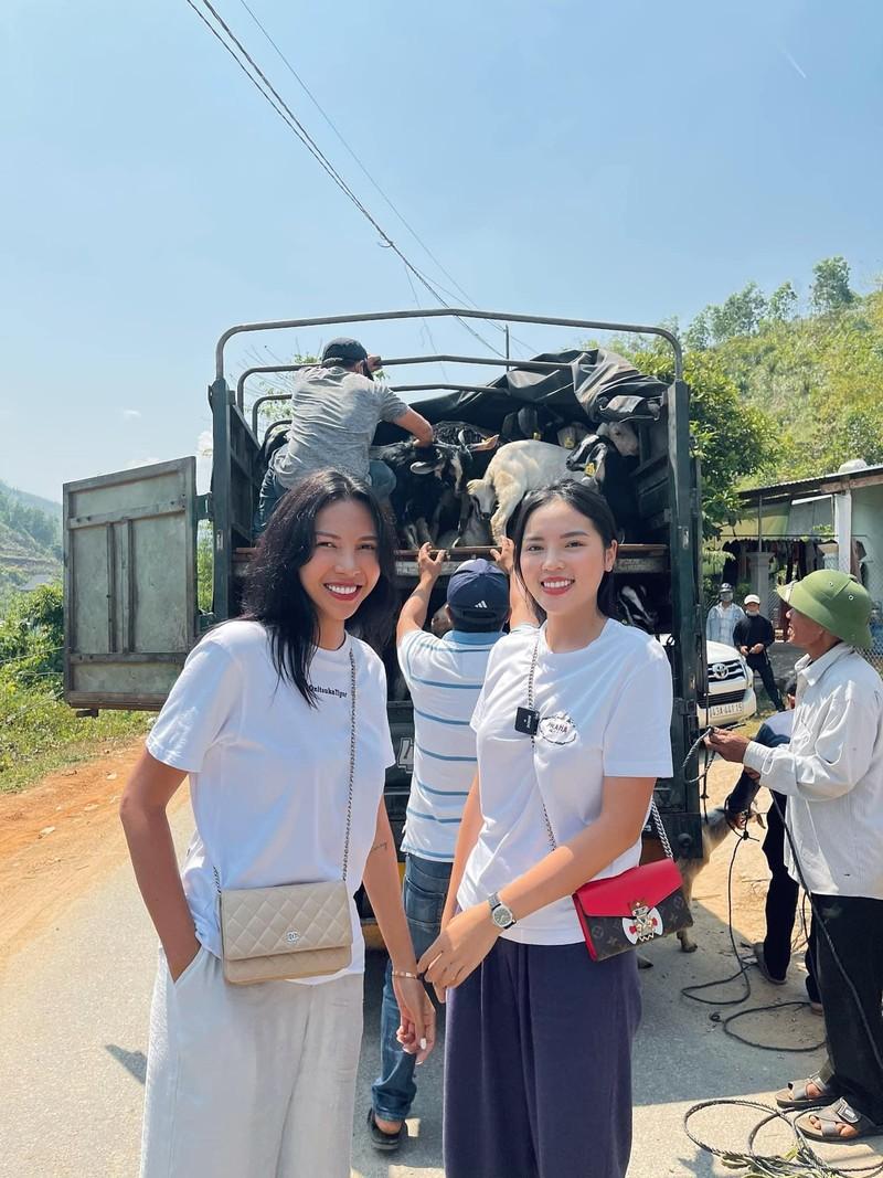 Kỳ Duyên, Minh Triệu tặng dê giống cho bà con ở Quảng Nam - ảnh 5