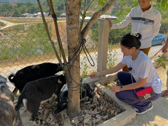 Kỳ Duyên, Minh Triệu tặng dê giống cho bà con ở Quảng Nam - ảnh 3