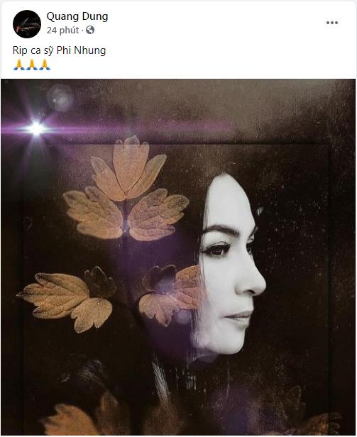 Ca sĩ Phi Nhung qua đời vì COVID-19, nhiều nghệ sĩ tiếc thương - ảnh 9