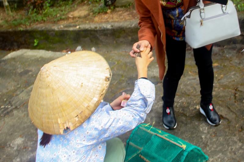Thảnh thơi đi xin 'nước cam lồ' ở tượng đài Quan âm - ảnh 5
