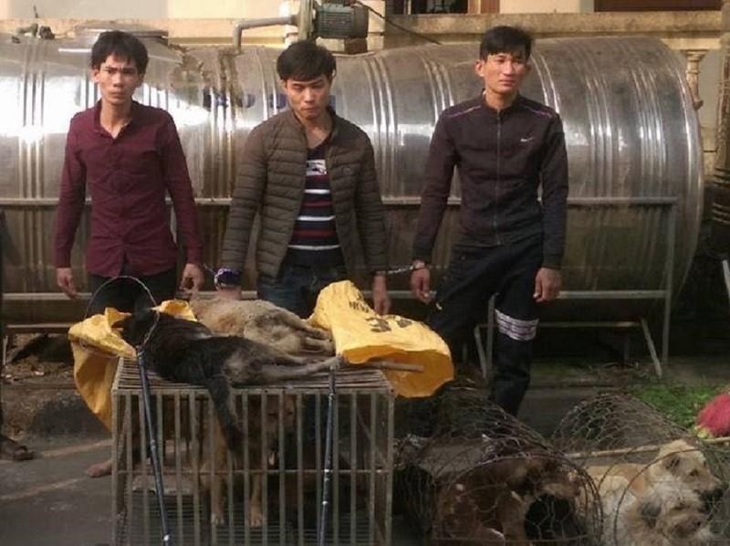 Đáng đời 4 'cẩu tặc' bị tóm gọn khi đang rao bán chó  - ảnh 1