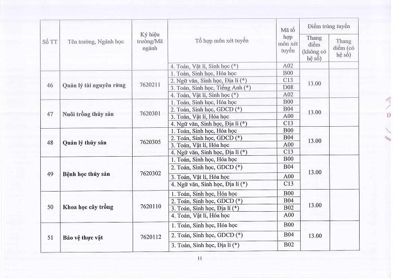 ĐH Huế công bố điểm chuẩn: 58 ngành lấy 13 điểm - ảnh 11