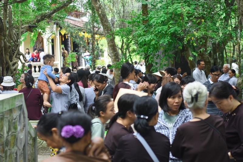 Phật tử đổ về chùa mong gặp thiền sư Thích Nhất Hạnh - ảnh 2