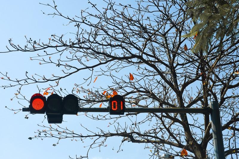 Xứ Huế đẹp nao lòng mùa cây bàng lá đỏ - ảnh 14