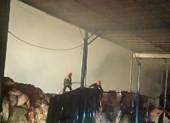 Nhà máy giấy ở Huế phát hỏa - ảnh 2