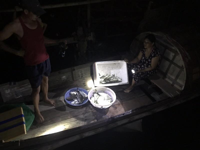 Cá chết hàng loạt nghi nhiễm độc khí gas - ảnh 2