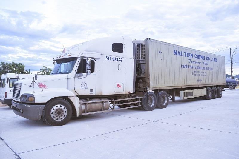 Tài xế có biểu hiện 'ngáo đá' điều khiển xe container - ảnh 2