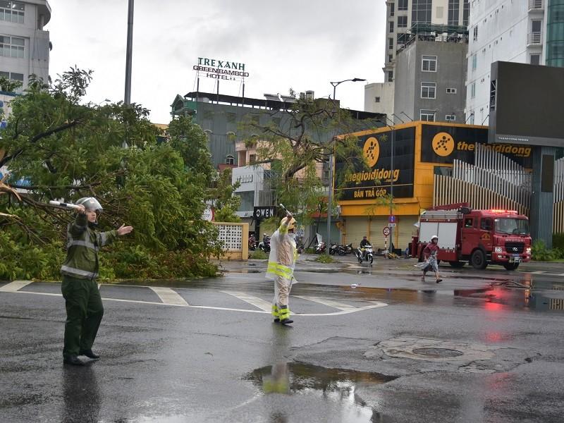 Thừa Thiên - Huế cây đổ hàng loạt, có người bị thương - ảnh 9