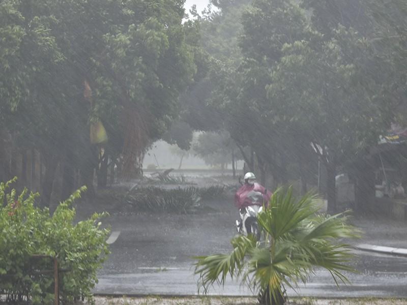 Thừa Thiên Huế mưa lớn làm nhà tốc mái, cây đổ - ảnh 1