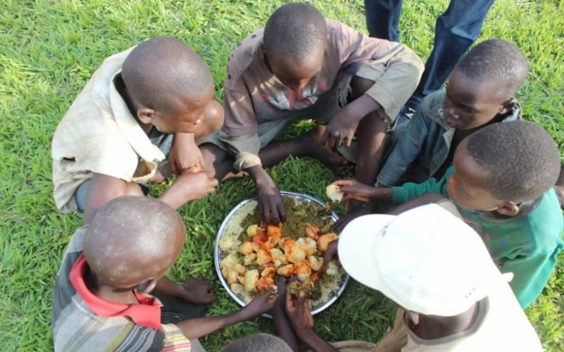 Biến đổi khí hậu và an ninh lương thực toàn cầu - ảnh 1