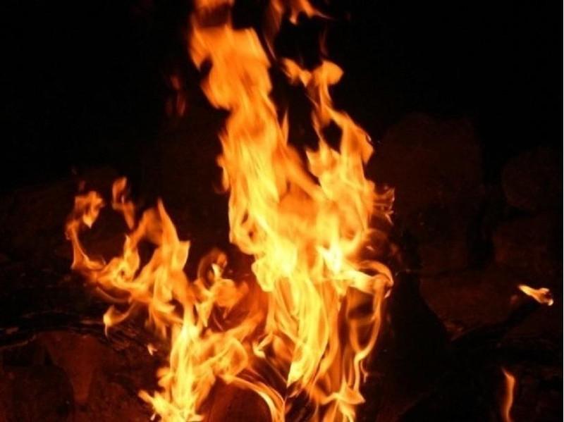 Thanh niên 'ngáo đá' đốt mẹ ruột lãnh án 20 năm tù - ảnh 1