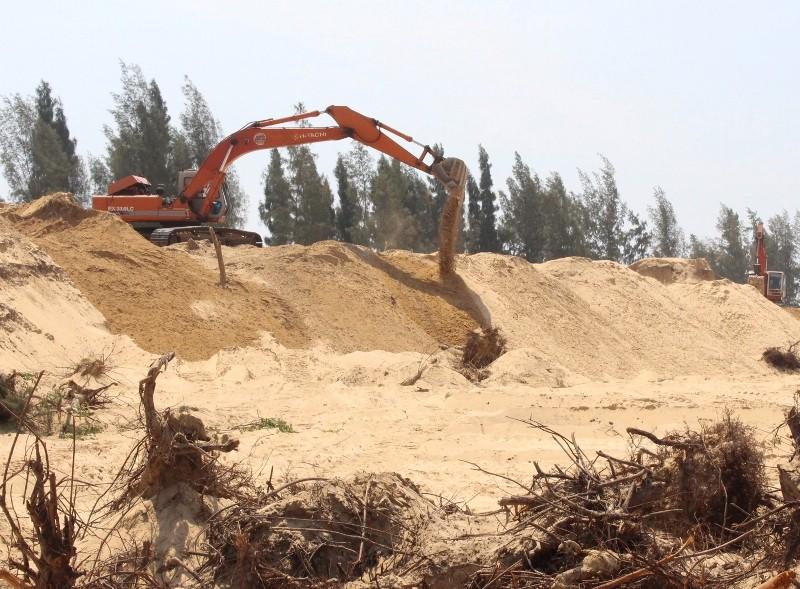 Thủ tướng chỉ đạo làm rõ vụ phá rừng phòng hộ ở Phú Yên - ảnh 1