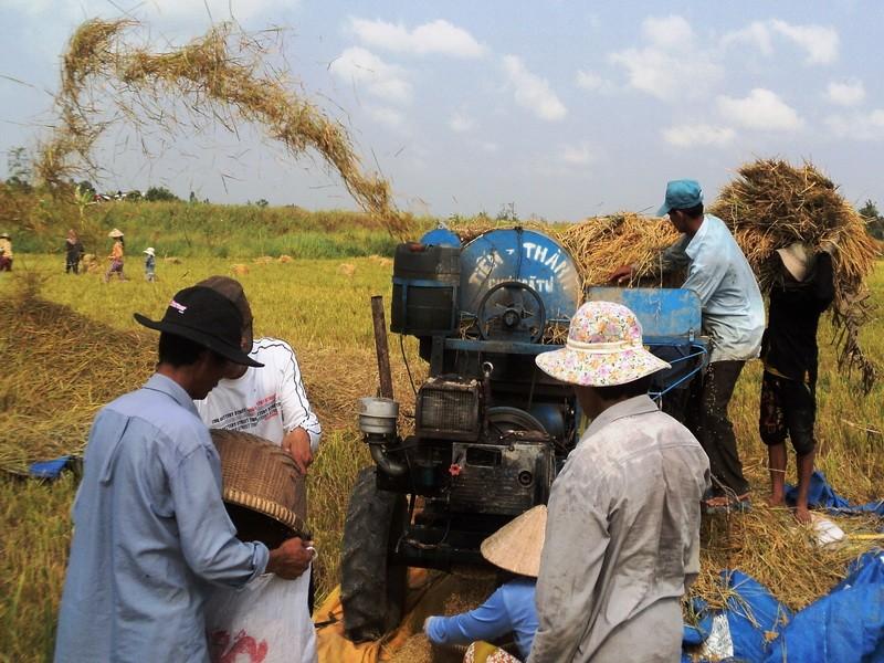 'Chính quyền đừng thay DN đi thỏa thuận với nông dân' - ảnh 2