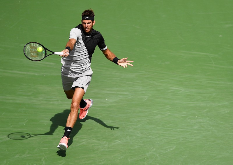 Hạ gục Federer, Del Potro lần đầu vô địch Indian Wells - ảnh 3