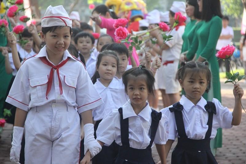 Các trường học tại TP.HCM đồng loạt khai giảng ngày 5-9 - ảnh 1