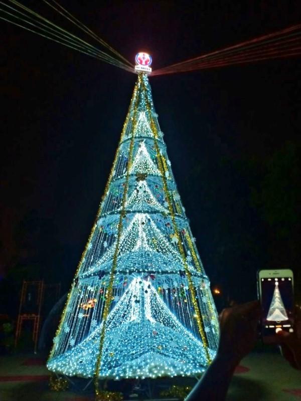 Ngắm cây Giáng sinh 11 m thông minh do sinh viên thiết kế - ảnh 6