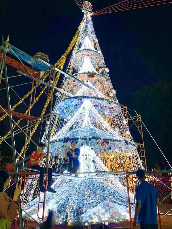 Ngắm cây Giáng sinh 11 m thông minh do sinh viên thiết kế - ảnh 3