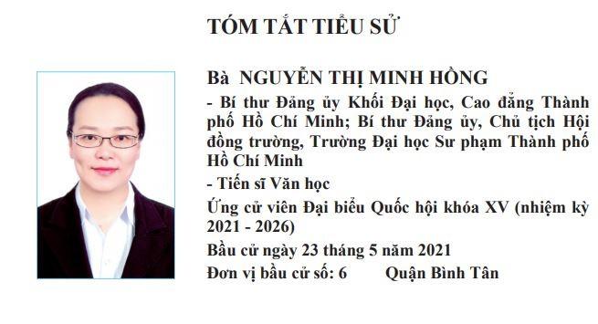 6 nhà giáo tại TP.HCM ứng cử đại biểu Quốc hội khóa XV là ai?  - ảnh 4