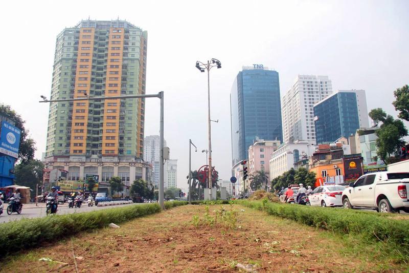 Hà Nội cắt tỉa cỏ trở lại sau 3 tháng 'án binh' - ảnh 9