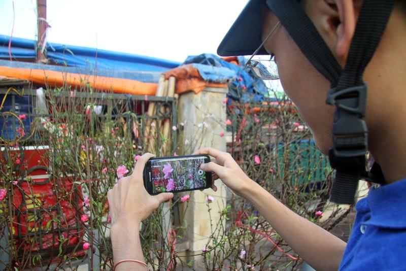 Rạng rỡ, đào Nhật Tân xuống phố phục vụ tết dương lịch - ảnh 11