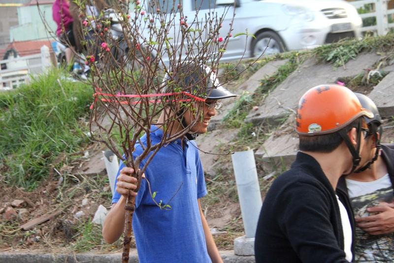 Rạng rỡ, đào Nhật Tân xuống phố phục vụ tết dương lịch - ảnh 12