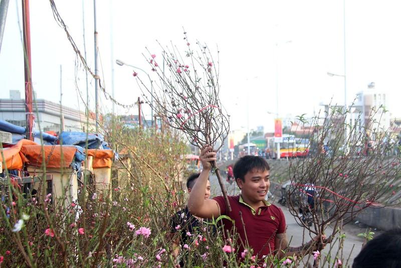 Rạng rỡ, đào Nhật Tân xuống phố phục vụ tết dương lịch - ảnh 8