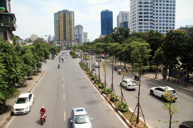 Dân đội nắng đi qua những con đường từng chặt hạ cây - ảnh 11