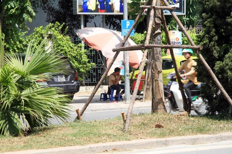 Dân đội nắng đi qua những con đường từng chặt hạ cây - ảnh 13
