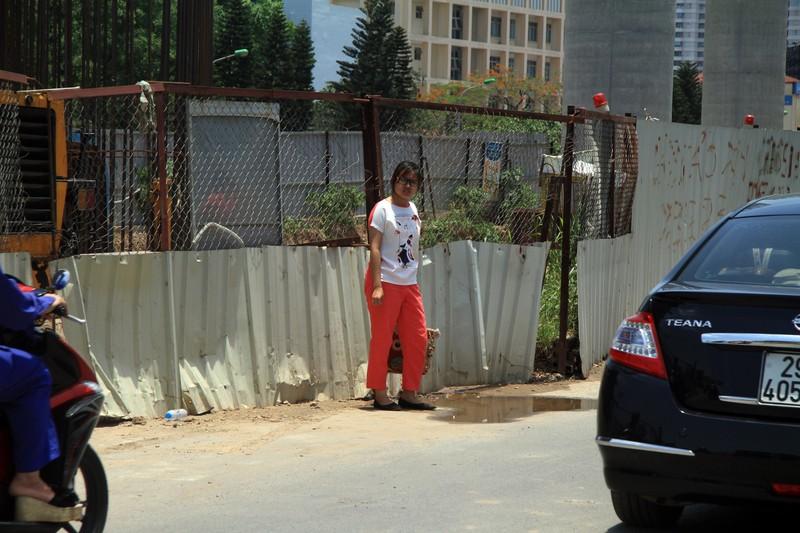 Dân đội nắng đi qua những con đường từng chặt hạ cây - ảnh 7