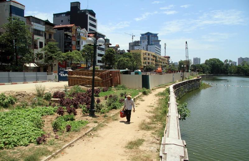 Dân đội nắng đi qua những con đường từng chặt hạ cây - ảnh 9