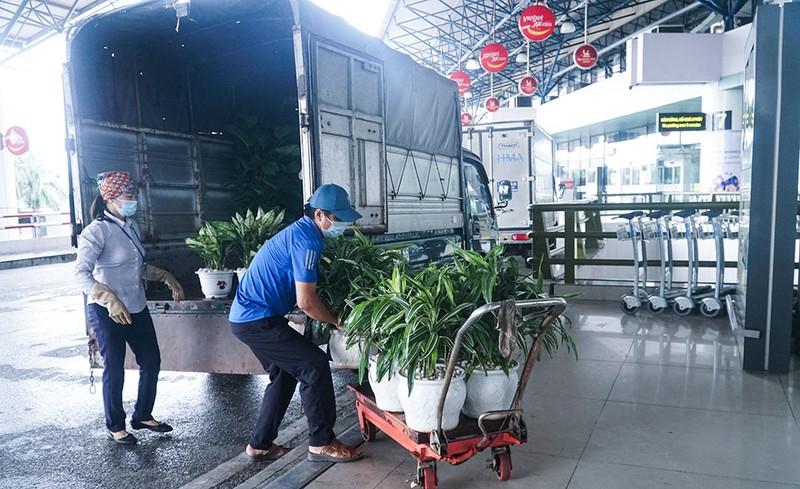 Cận cảnh sân bay Nội Bài ngày đầu mở cửa đón khách trở lại - ảnh 1