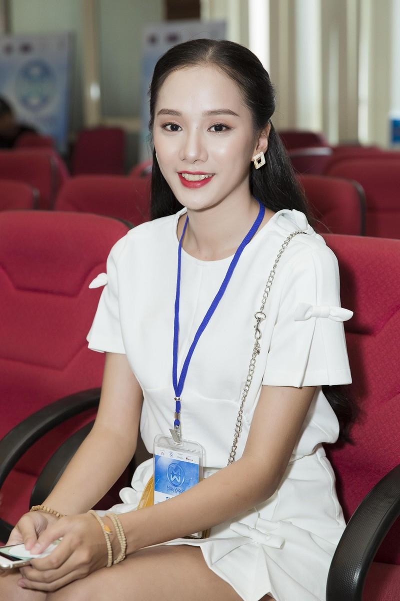 Thí sinh thạc sĩ thi hoa hậu tại sơ khảo phía Bắc Miss Word  - ảnh 9