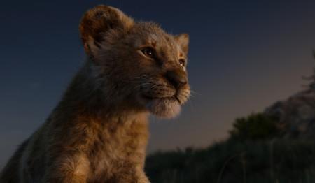 Sau 'The Lion King' Disney bắt đầu làm phim công nghệ VR - ảnh 1