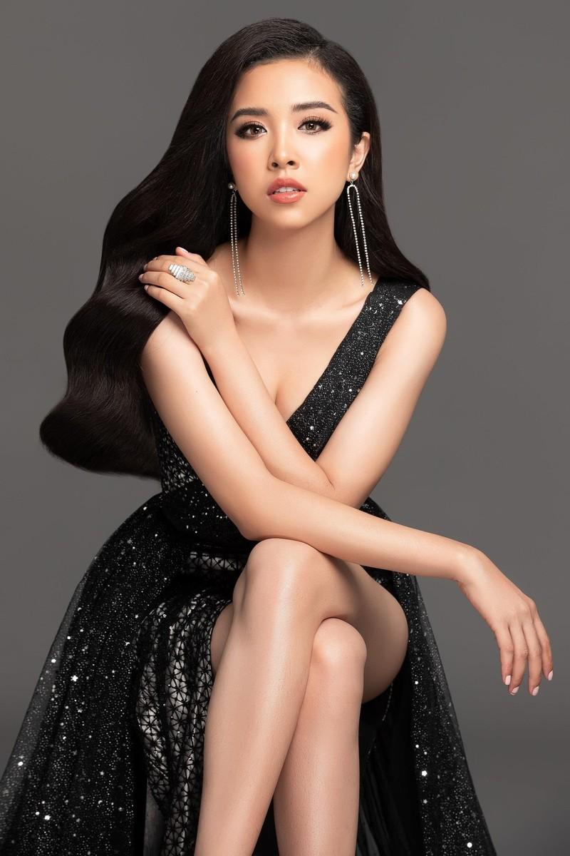 Á hậu Thúy An đại diện Việt Nam thi Miss Intercontinental  - ảnh 3