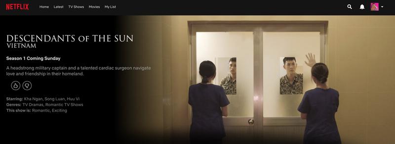 'Hậu duệ mặt trời' phiên bản Việt chiếu trên Netflix - ảnh 1