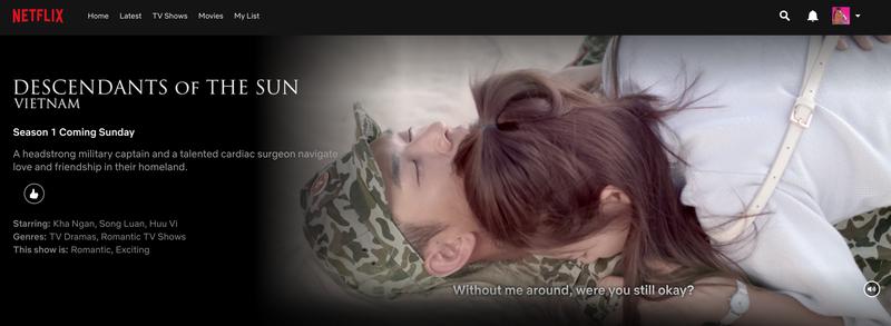 'Hậu duệ mặt trời' phiên bản Việt chiếu trên Netflix - ảnh 2