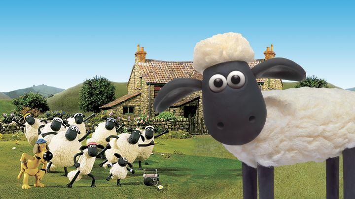 Bảng thành tích của chú cừu nổi tiếng nhất thế giới - ảnh 2