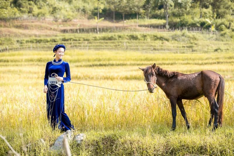Miss World tung clip giới thiệu của hoa hậu Lương Thùy Linh  - ảnh 3