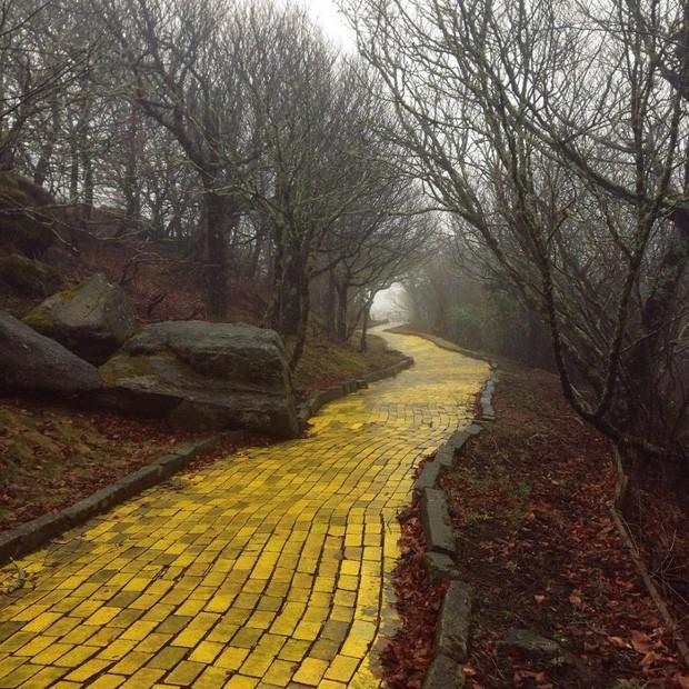 Những bức hình đáng kinh ngạc về những nơi bị bỏ hoang  - ảnh 11