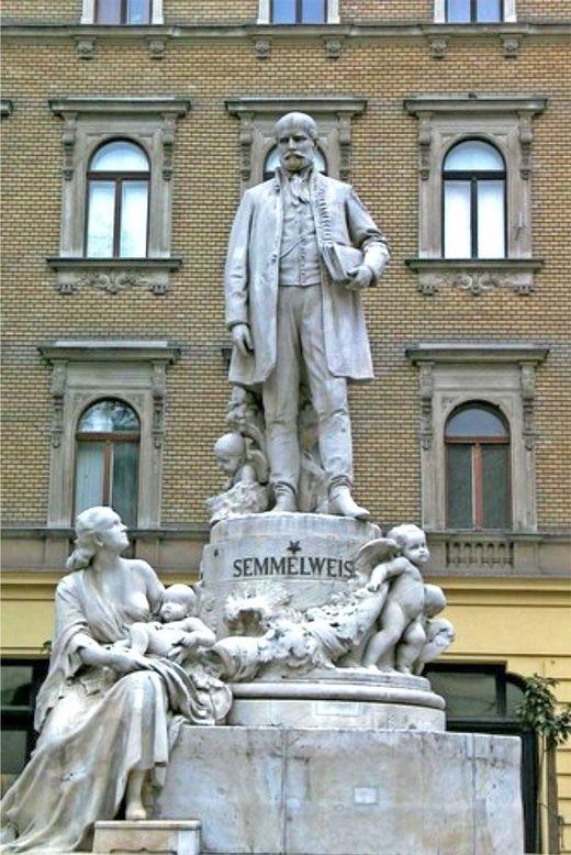 Google Doodle vinh danh bác sĩ Ignace Semmelweis - ảnh 1