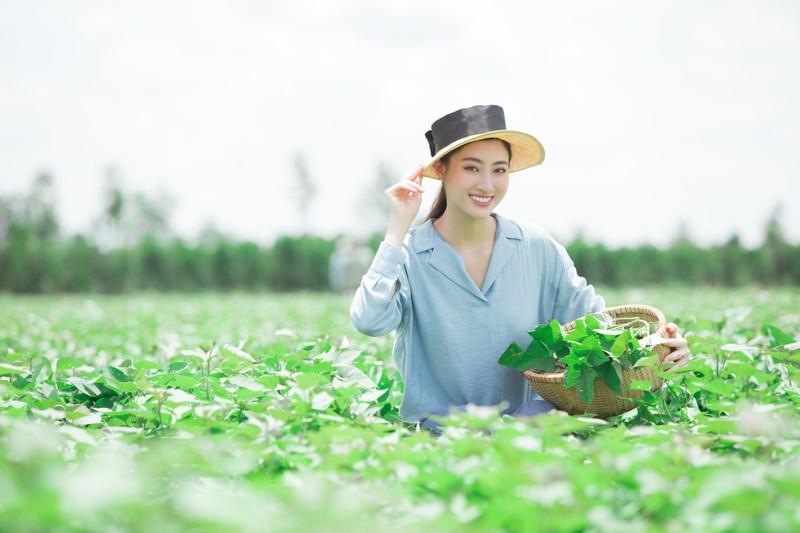 Lương Thuỳ Linh thả dáng đầy thơ mộng giữa vườn cam - ảnh 3