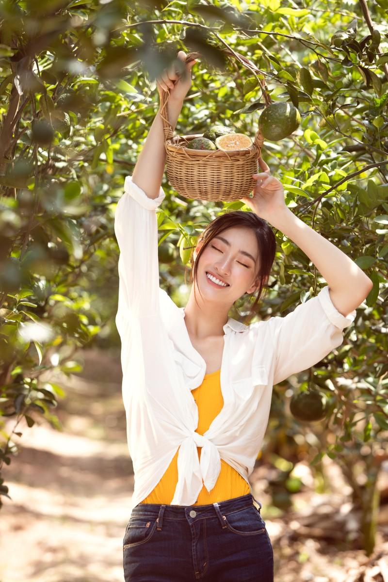 Lương Thuỳ Linh thả dáng đầy thơ mộng giữa vườn cam - ảnh 1