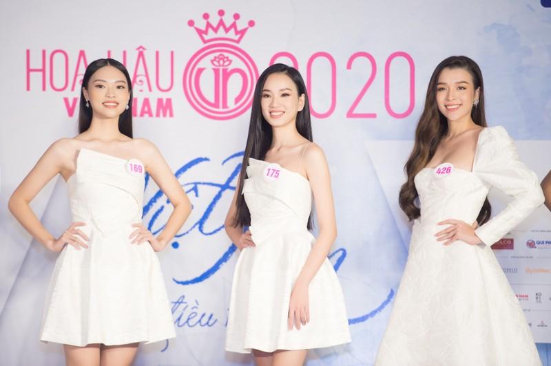Nhiều du học sinh có mặt ở Bán kết Hoa hậu Việt Nam 2020 - ảnh 2