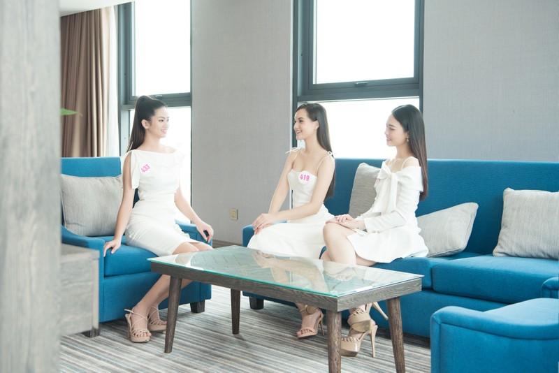 35 thí sinh Hoa hậu Việt Nam hội tụ tại Vũng Tàu - ảnh 1