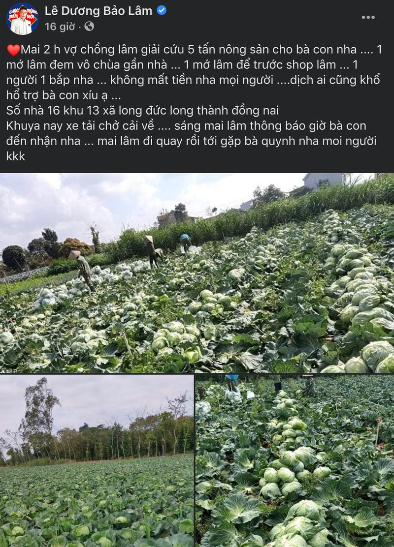 Lê Dương Bảo Lâm giải cứu nông sản giữa mùa dịch COVID-19 - ảnh 1