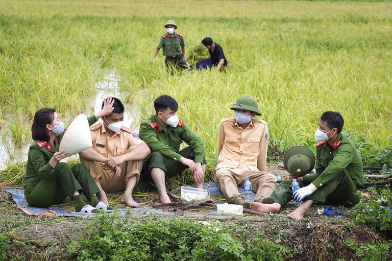 Chiến sĩ công an Yên Dũng giúp người dân bị cách ly gặt lúa - ảnh 7