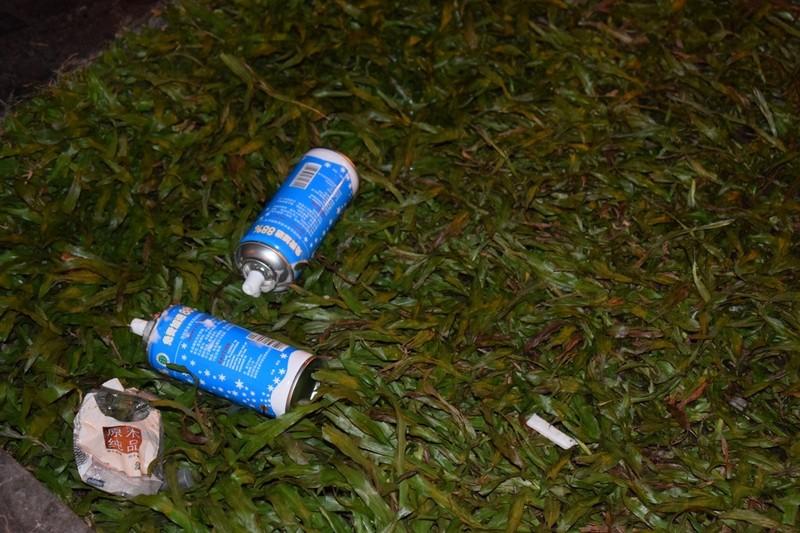 Sau đêm Noel, nhà thờ Đức Bà tràn ngập rác - ảnh 6