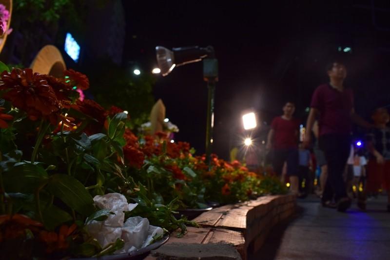 Đường hoa Nguyễn Huệ sau đêm mùng 3 Tết - ảnh 7