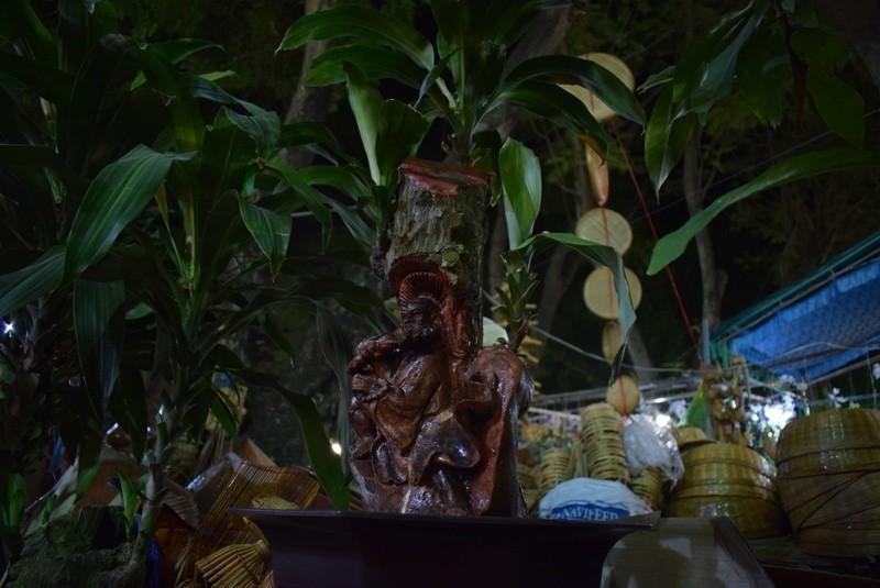 Cây kiểng, bonsai độc lạ làm khách hàng trầm trồ - ảnh 8