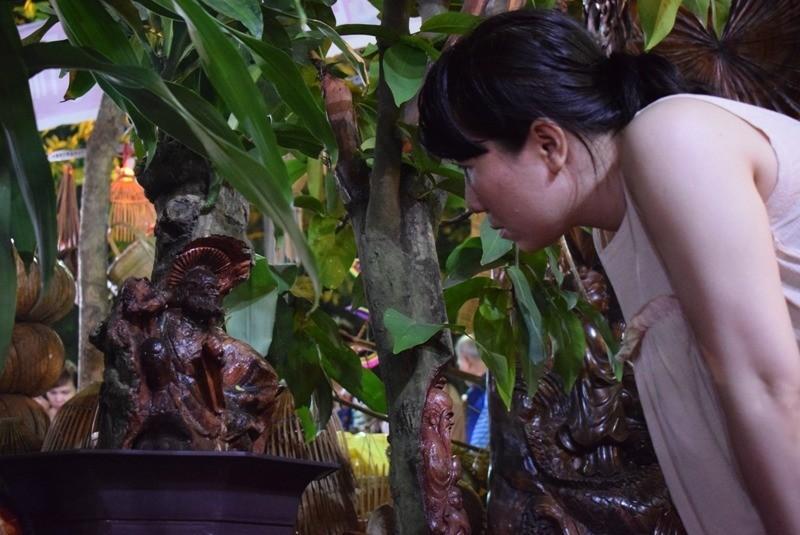 Cây kiểng, bonsai độc lạ làm khách hàng trầm trồ - ảnh 9